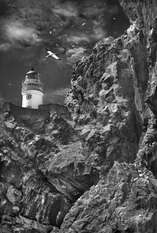 Bass-RockLighthouse-3-SW-_.jpg